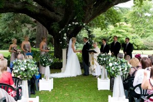Wedding Arch and Topiary Trees 2