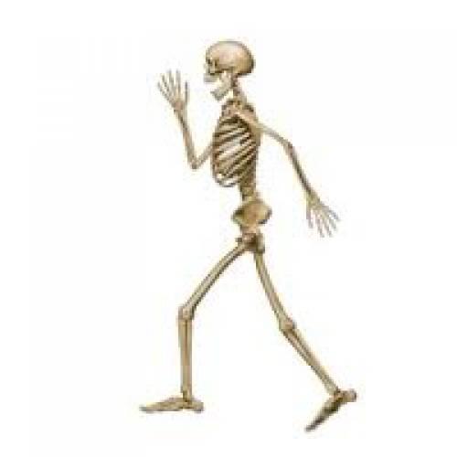 Halloween Party Supplies Skeleton Cutout