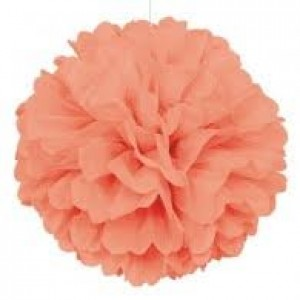 Tissue Paper Pom Pom 45cm - Peach