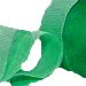 Green Crepe Paper Streamer