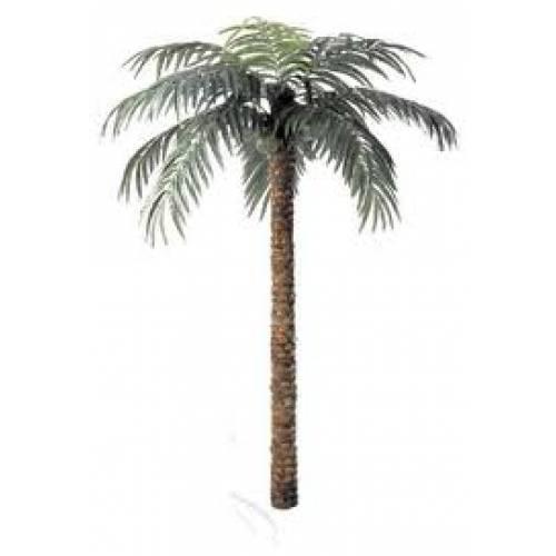 Palm Tree 1.9m