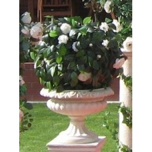 Sandstone Urn with Topiary Ball