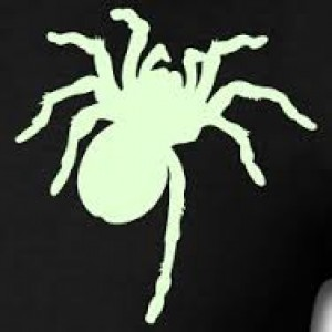 Halloween- Glow in the dark Tarantula