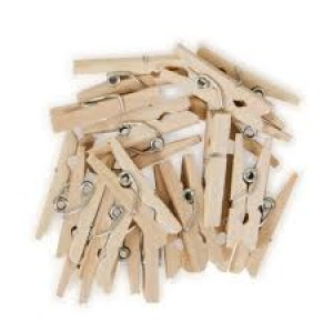 Small Wooden pegs - 30pk